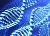 Бизнес-идеи: Открытие ДНК-клиники